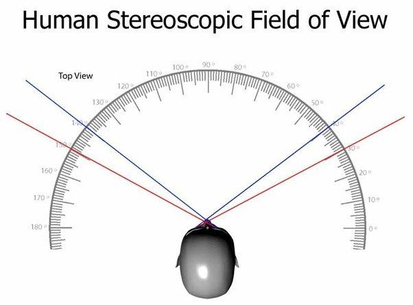 поле зору у людини